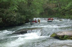 Great_Smokey_Mountain_Trail_Ride_037.jpg