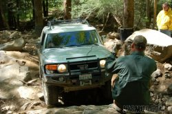 Great_Smokey_Mountain_Trail_Ride_159.jpg
