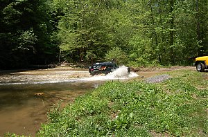 Great_Smokey_Mountain_Trail_Ride_076.jpg