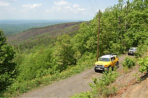 Great_Smokey_Mountain_Trail_Ride_102.jpg